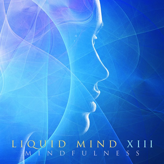 Liquit Mind XIII: Mindfulness